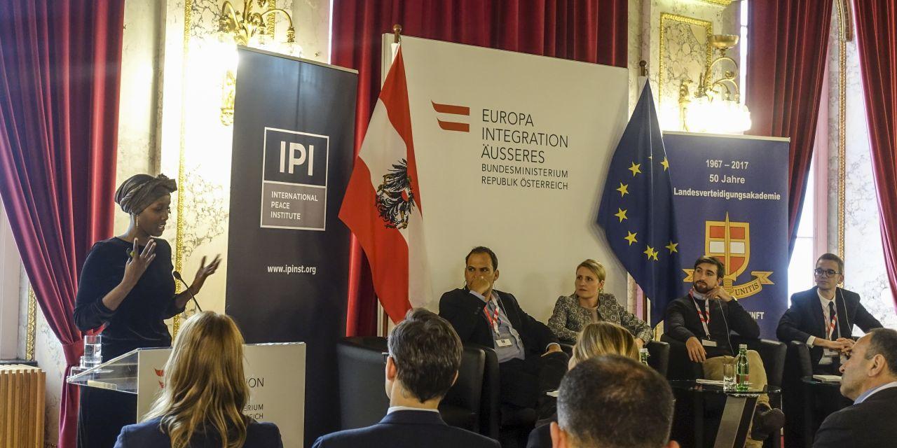Talk and panel discussion at IPI's 2017 Vienna Seminar